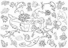 November Malvorlagen Jepang Unterwassertiere Malvorlagen C
