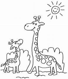 ausmalbilder giraffe baby 1044 malvorlage giraffe