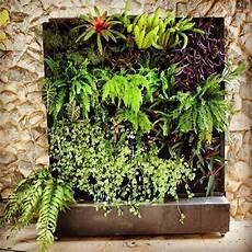 giardino verticale fai da te giardino verticale fai da te progettazione giardini