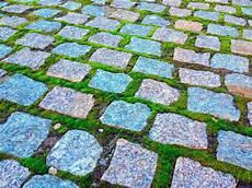 moos steinen entfernen moos aus pflasterfugen entfernen 187 diese hausmittel wirken