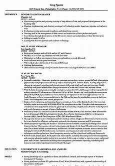 it audit manager resume sles velvet