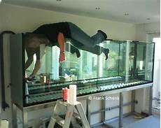 aquarium im badezimmer aquarienservice aquarienpflege aquarienbau fisch und heim