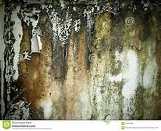 nasse wand trocknen wall stock image image of house