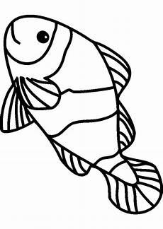 ausmalbilder fische ausdrucken ausmalbilder