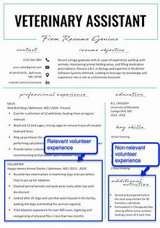 how to put volunteer work on your resume resume genius