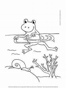 frosch bilder malvorlagen zeichnen und f 228 rben