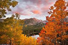 rocky colours nesara republic now galactic news beauti fall