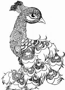 coloring pages mandalas animals 17087 b w peacala peacock animal bird drawing blackandwhite mandala nsvtwork nsvtwork