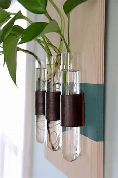 easy diy wall mounted test vases
