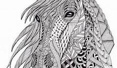Malvorlage Pferd Erwachsene Ausmalbilder Tiere Dessin