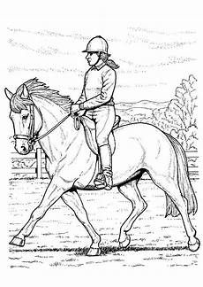 20 der besten ideen f 252 r ausmalbilder pferde voltigieren