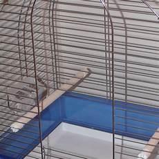 pappagallo in gabbia le migliori gabbie per pappagalli calopsitte cocorite e