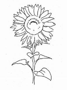 Ausmalbilder Blumen Pdf Ausmalbild Sonnenblume 2 Kostenlos Ausdrucken