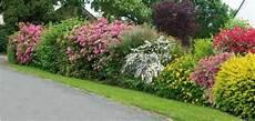 Haie Fleurie D 233 T 233 Jardins Id 233 Es Jardin Et Amenagement