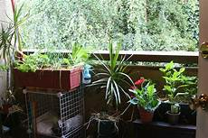 Apartment Patio Container Garden by Apartment Gardening Living In The O