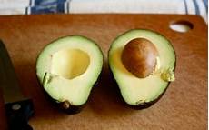 Avocado Pflanze Schneiden - the trick to growing your own avocado plant charts