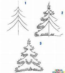 learn how to draw a fir tree crafts creativity