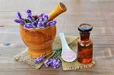 lavanda in vaso cure pianta di lavanda coltivazione in vaso cure naturali it