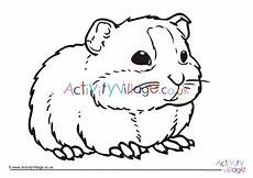guinea pig colouring page 4
