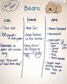 animals in winter worksheets for kindergarten 14199 hibernating animals lesson plans for kindergarten