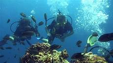 scuba diving in the perhentian island malaysia youtube