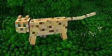 Ausmalbilder Minecraft Katze Videospiel Tiere Die Coole Haustiere W 228 Ren