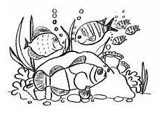 Fische Malvorlagen Zum Ausdrucken Jung Fische Im Meer Mit Korallen Ausmalbilder Ausmalbilder