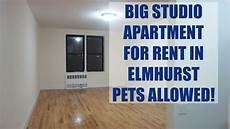 Apartments For Rent In Pets Allowed pets allowed in this large studio apartment for rent in
