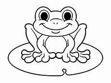 hibia frog colouring image