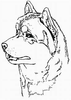 Husky Coloring Pages Uk Husky Coloring Pages Coloring Pages To And Print