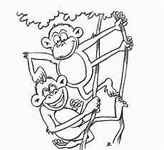 Zootiere Malvorlagen Free Animals Coloring Pages Zoo To