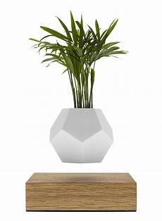 Pot De Fleur En Levitation Lyfe Flyte Blanc Bois Made