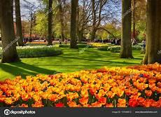 giardini in fiore foto giardino di keukenhof lisse paesi bassi 29 aprile 2017