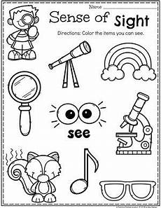 5 senses senses preschool five senses preschool five senses kindergarten