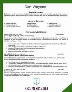 new zealand resume template