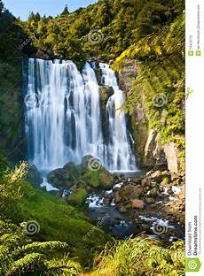 tropical waterfall stock photos image 19476173