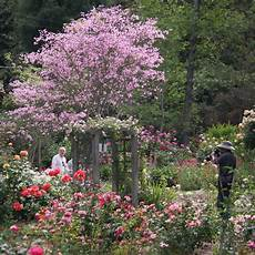 gardens descanso gardens guild