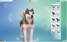 test de les sims 4 chiens et chats par jeuxvideo