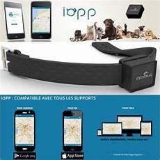 balise gps pour chien et chat avec localisation sur smartphone