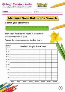 science plants ks1 worksheets 13580 ks1 science plants grow a daffodil bulb by rubytuesdaybooks teaching resources tes in