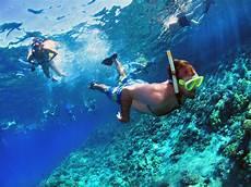 molokini crater snorkeling trips info hawaii