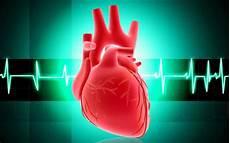 Bagaimana Anatomi Dan Cara Kerja Fisiologi Jantung