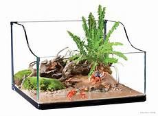 le exo terra exo terra turtle terrarium small aquaterrarium