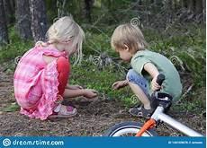 Malvorlagen Insekten Spielen Zwei Kinder Die In Den Ein Waldkindern Schauen Auf Kleine