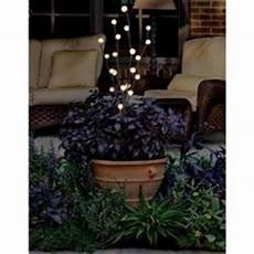 trendscape single pc head cattail solar led light gx 2441 at the home depot garden