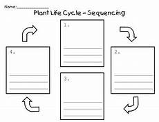 plants sequencing worksheets 13629 13 best images of printable sequencing worksheets kindergarten printable sequencing worksheets