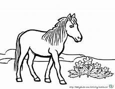 38 ausmalbilder pferde springen besten bilder