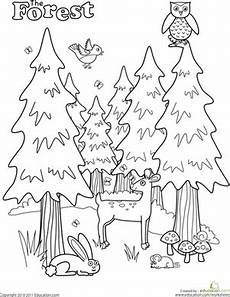 easy nature coloring pages 16364 forest worksheet education