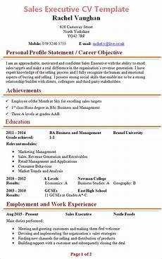 sales executive cv template 1