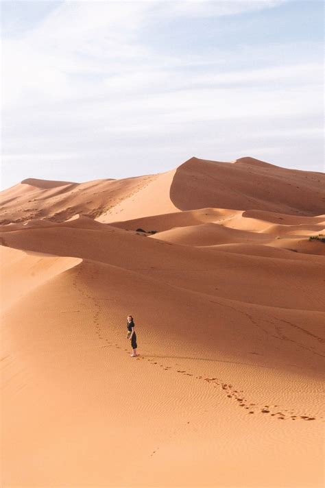 Egypt Sahara